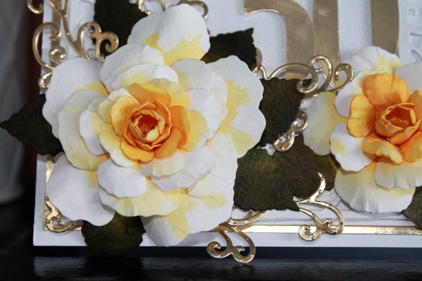 50th Anniversary Yellow Rose Lg close up