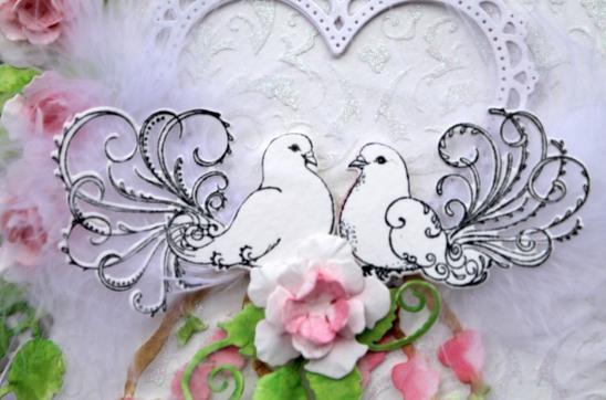dove-wedding-card-dove-close-up
