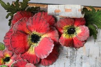 birch bark poppy close up lg flower